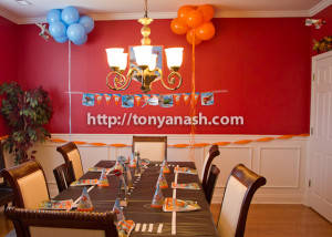 Disney Planes Party Decorations